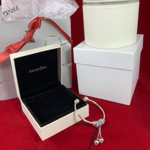 NWT Genuine Pandora Moments Bracelet and Charms